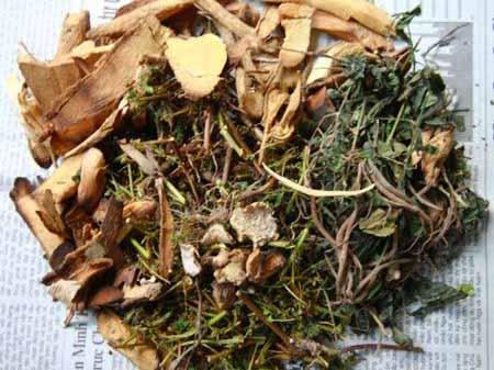 bài thuốc về cây quýt gai