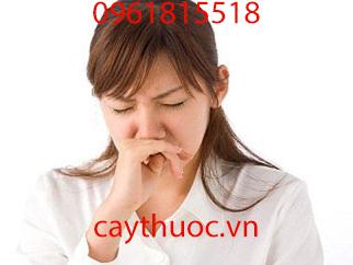 cây bọ mắm chữa viêm mũi