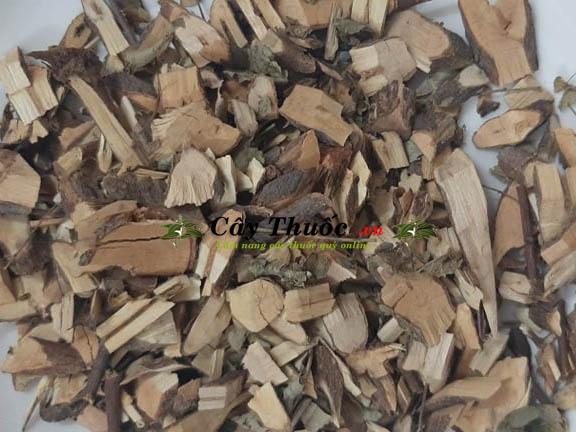 Cây mực là gì? Tác dụng và cách dùng cây mực trị bệnh hiệu quả