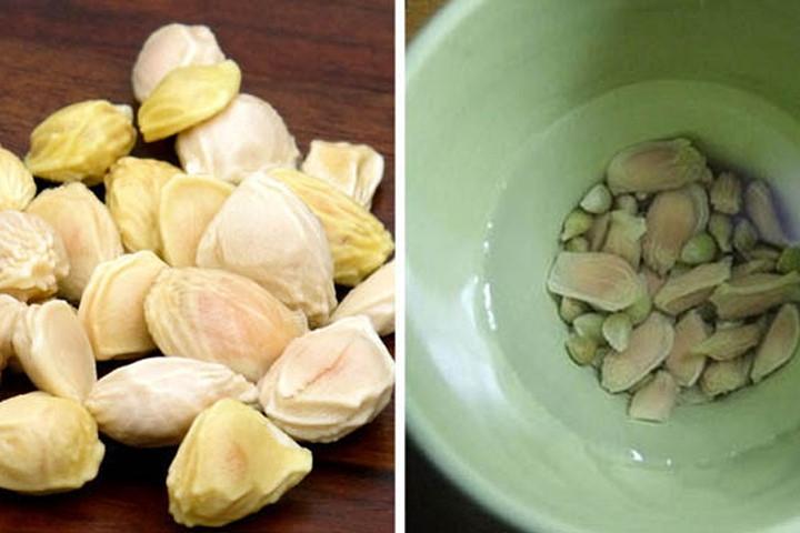 Hạt bưởi với tác dụng từ tinh chất nhầy chữa đau dạ dày và làm đẹp.