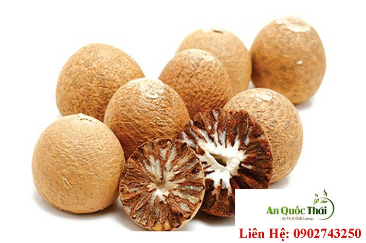 Hạt cau (Binh lang) có công dụng gì? Được dùng điều trị bệnh gì?