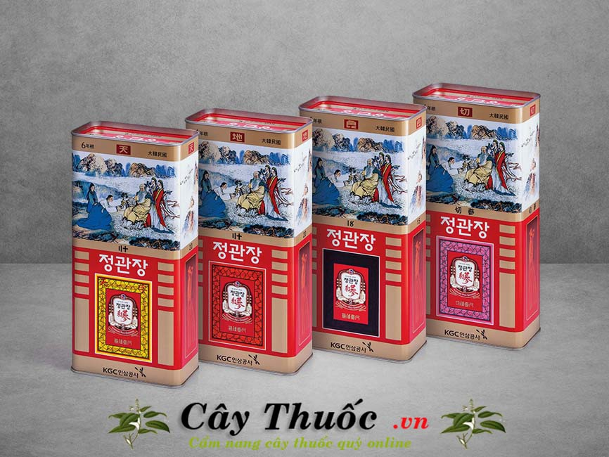 Sâm cao ly Hàn Quốc: Hình ảnh, tác dụng, giá bán, địa chỉ bán