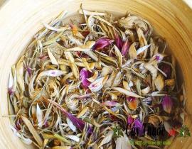 Hoa atisô với cách sử dụng và công dụng tuyệt vời cho sức khỏe.
