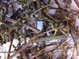 Hy thiêm tác dụng chữa bệnh gì? Địa chỉ bán cây hy thiên khô TP HCM?