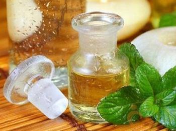Tinh dầu bạc hà [ tác dụng, cách làm ] mua ở đâu nguyên chất giá rẻ?